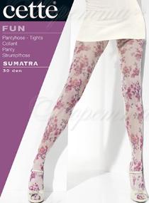 Cette 864 Sumatra